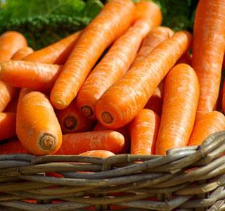 Jurassic-Coast-Farm-Shop-veg-carrots-link
